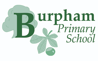 Burpham Primary School PSA